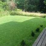 landscaping services costa rica