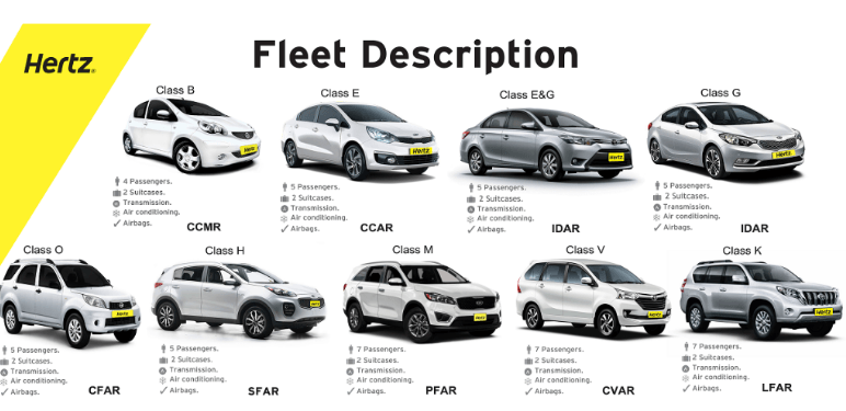 Hertz Car Rental Contact Email