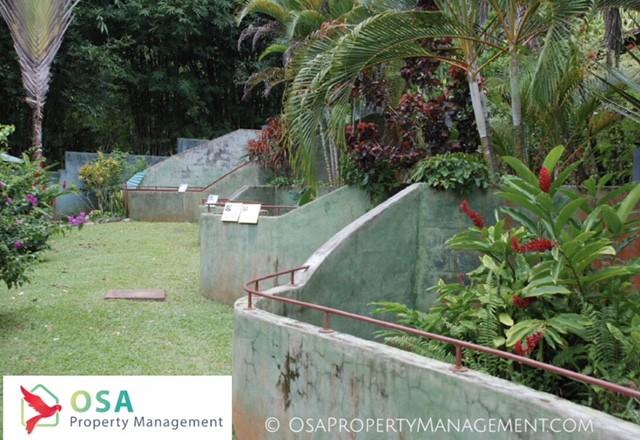parque reptilandia zoo walls