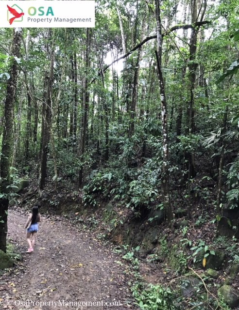 nauyaca waterfalls hiking