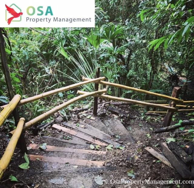 nauyaca waterfalls hike stairs